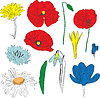 Vector clipart: a set of spring flowers