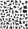 Vector clipart: large collection of different silhouettes of dogs