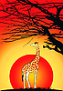 Vector clipart: giraffe at sunset