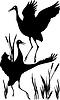 Vector clipart: dancing cranes