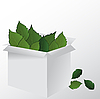 Box and leaves | Stock Illustration
