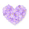 Vector clipart: floral heart