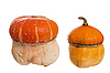 Two decorative pumpkins | Stock Foto