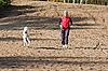 Ejecución de mujer deportivo con perro | Foto de stock