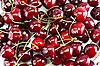 Ripe Cherries | Stock Foto