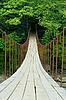 吊桥 | 免版税照片