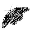 Vektor Cliparts: Schmetterlings-Silhouette