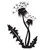 Vector clipart: Dandelion silhouette