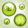 Green Eco natürlichen Abzeichen