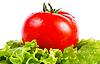 Tomato and lettuce | 免版税照片