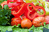 蔬菜 | 免版税照片