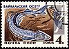 ID 3181142 | Baikal sturgeon on post stamp | 높은 해상도 그림 | CLIPARTO