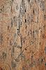 风化木制背景 | 免版税照片