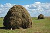 초원에 두 개의 건초 더미 | Stock Foto