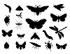 Vector clipart: insects set