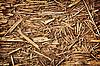 썩은 칩 - 자연 배경 | Stock Foto