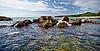 Landscape - the coast of tropical ocean | 免版税照片