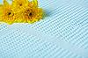 黄色的花朵在蓝色的毛巾 | 免版税照片