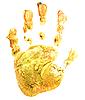 Yellow print baby palm | 免版税照片