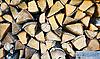 Woodpile | 免版税照片