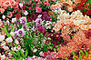 ID 3183709 | Background of artificial flowers | High resolution stock photo | CLIPARTO