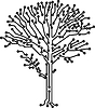 Vector clipart: tree crone made of electronic paths