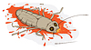 Vector clipart: Squashed cockroach