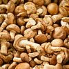 食用菌市场   免版税照片