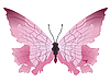 Vector clipart: the butterfly