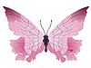Vektor Cliparts: der Schmetterling