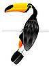 Vector clipart: toucan