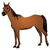 Vektor Cliparts: Pferd