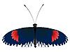 Vektor Cliparts: Farbe Schmetterling