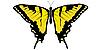 Vektor Cliparts: Zeichnen Machaon Schmetterling