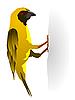 Vector clipart: yellow bird