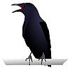 Vector clipart: Raven