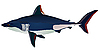 Vector clipart: shark