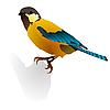 Vector clipart: bird