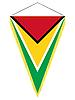 Векторный клипарт: вымпел с государственным флагом Гайаны