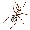 Векторный клипарт: муравей