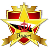 gold star to the flag of Brunei the