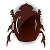 Vector clipart: picture of beetle