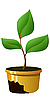 Vector clipart: sprout in pot