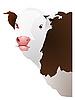 Vector clipart: cow`s head
