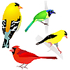 Vector clipart: Set of birds