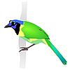 Vector clipart: Beautiful green bird