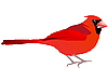 Vector clipart: Beautiful red bird
