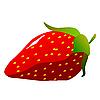 Vector clipart: Strawberries.
