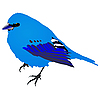 Vector clipart: blue bird