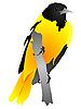 Vector clipart: Yellow bird sitting on branch